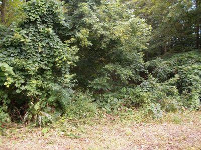 Brocton Residential Lots & Land For Sale: Ellicott & Webster Roads