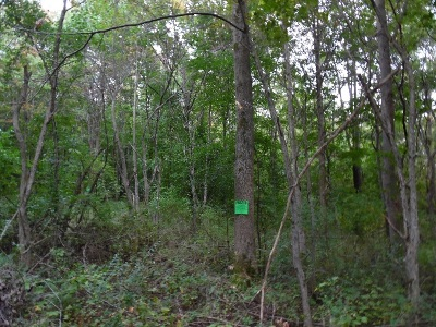 Residential Lots & Land For Sale: Route 430