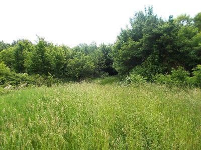 Fredonia Residential Lots & Land For Sale: Webster Road