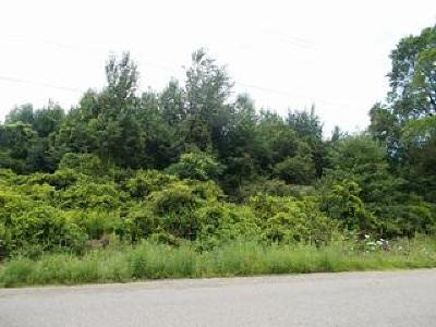 Fredonia Residential Lots & Land For Sale: Route 20