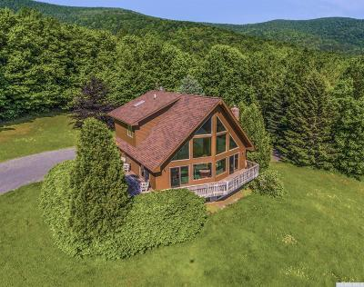 Greene County Single Family Home For Sale: 153 Don Irwin Road