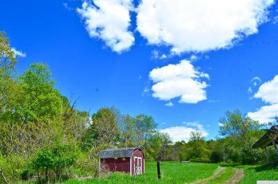 Copake Residential Lots & Land For Sale: 175 Overlook Road