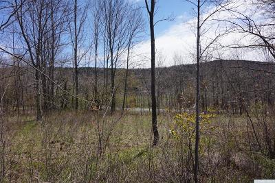 Windham Residential Lots & Land For Sale: Blodgett Rd