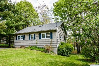 Copake Single Family Home For Sale: 77 Lakeshore Drive