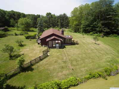 Chatham Single Family Home For Sale: 1086 Albany Turnpike Road