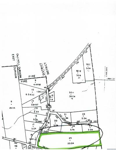 Durham Residential Lots & Land For Sale: County Route 20