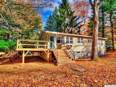 Copake Single Family Home For Sale: 11 Lincoln