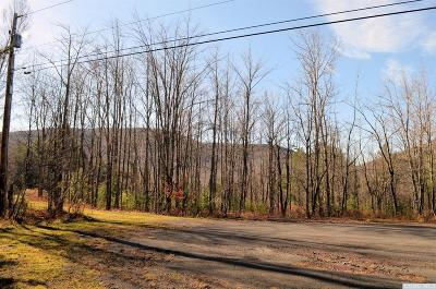 Jewett Residential Lots & Land For Sale: 99 Wilderness Dr East