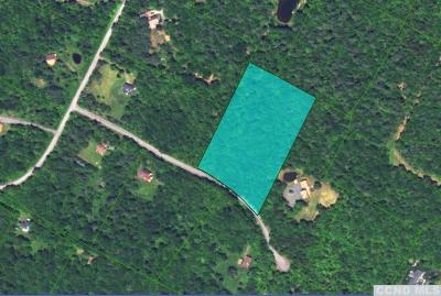 Jewett Residential Lots & Land For Sale: 69 Wilderness Dr East