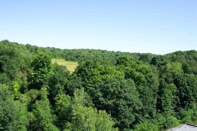 Chatham Residential Lots & Land For Sale: Highland Road