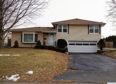 Hudson Single Family Home For Sale: 16 Joslen Place