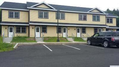 Greene County Multi Family Home For Sale: 15023 Route 23