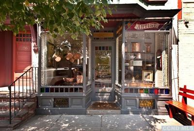 Hudson Single Family Home For Sale: 508 Warren Street