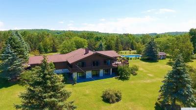 Greene County Farm For Sale: 590 Plattekill Road