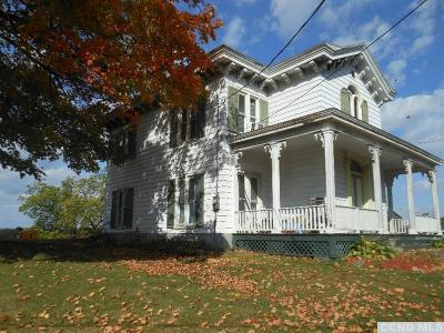 Columbia County Single Family Home For Sale: 871 Route 9h