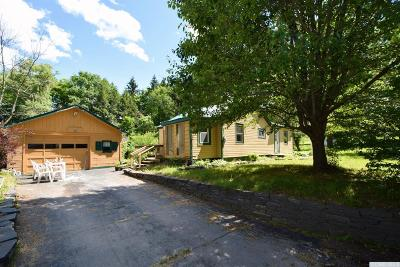 Prattsville Single Family Home For Sale: 28 Timm Road
