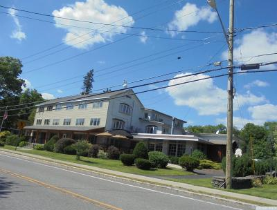 Windham Single Family Home For Sale: 5220 Route 23