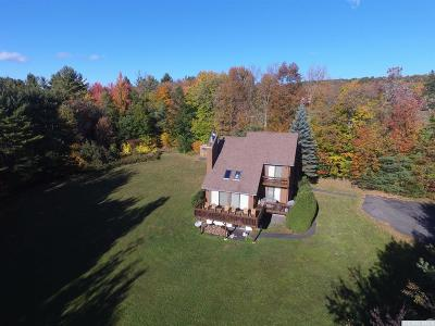 Windham Single Family Home For Sale: 29 Old Road