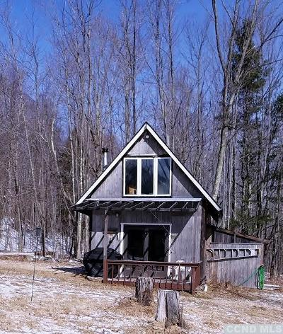 Windham NY Single Family Home For Sale: $165,000