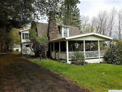 Windham NY Single Family Home For Sale: $329,000