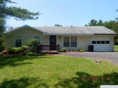 Albany County Single Family Home For Sale: 358 County Route 409