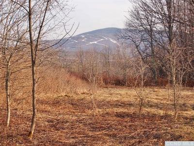 Jewett Residential Lots & Land For Sale: 135 Peck Road
