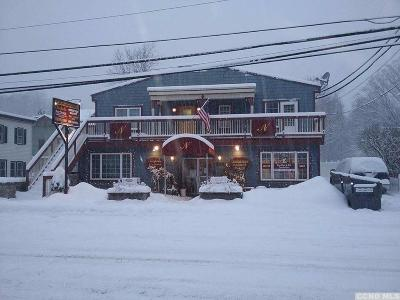 Windham NY Multi Family Home For Sale: $975,000