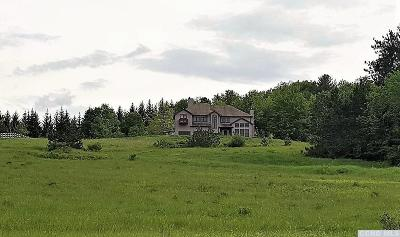 Greene County Single Family Home For Sale: 757 Stone Bridge Rd