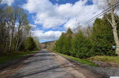 Jewett Residential Lots & Land For Sale: 81 Shad Road
