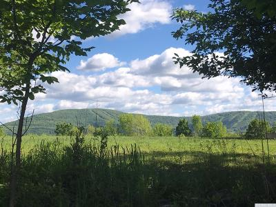 Windham Residential Lots & Land For Sale: Stony Hill Pass