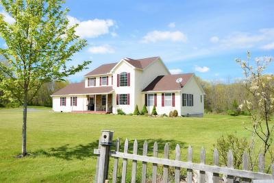 Claverack Single Family Home For Sale: 150 County Route 9