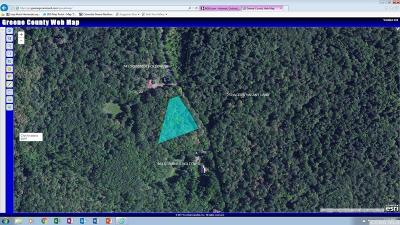 Hunter Residential Lots & Land For Sale: 699 Scribner Hollow
