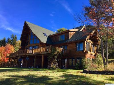 Albany County Single Family Home For Sale: 667 County Route 353