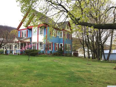 Greene County Single Family Home For Sale: 3292 Route 23a