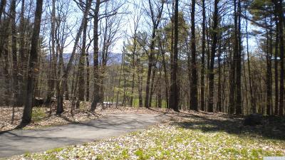 Greene County Single Family Home For Sale: 648 Sandy Plains Road