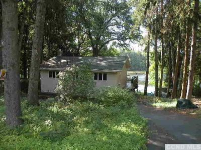 Copake Single Family Home For Sale: 1264 Lakeview Road