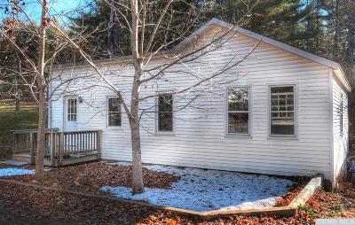 Copake Single Family Home For Sale: 38 Robin Road