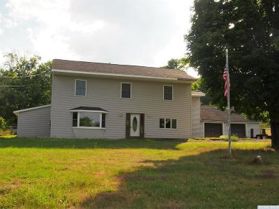 Windham NY Single Family Home For Sale: $225,000