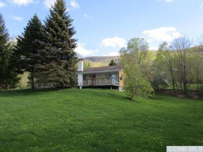 Greene County Single Family Home For Sale: 167 Rappleyea Road
