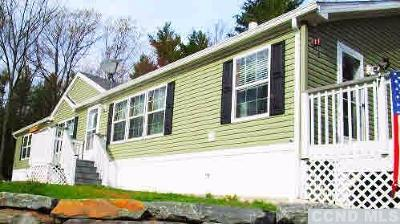 Prattsville Single Family Home For Sale: 4323 County Route 10