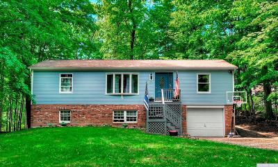 Copake Single Family Home For Sale: 15 Birch Road