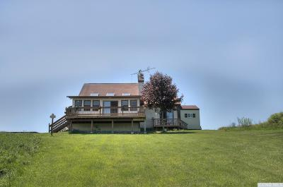 Greene County Single Family Home For Sale: 3085 Sleepy Hollow Road