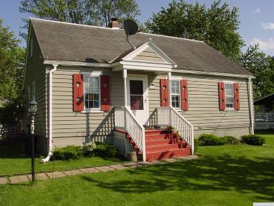 Hudson Single Family Home For Sale: 204 Harry Howard Avenue