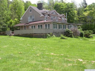 Jewett Single Family Home For Sale: 252 County Route 77