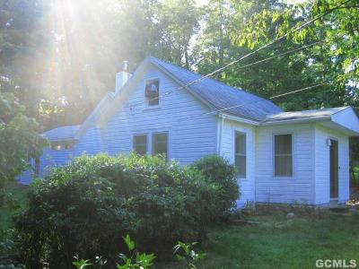 Durham Single Family Home For Sale: 3005 Route 145