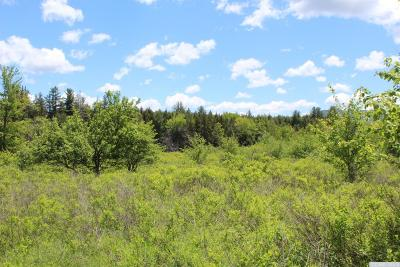 Jewett Residential Lots & Land For Sale: 401 Goshen Street