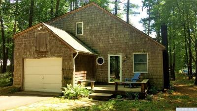 Copake Single Family Home For Sale: 140 Lakeshore Drive