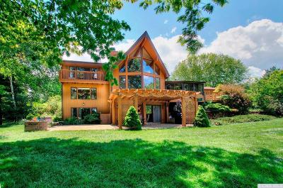 Copake Single Family Home For Sale: 220 Island Drive
