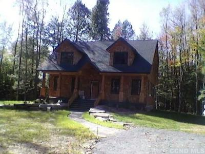 Windham NY Single Family Home For Sale: $449,900