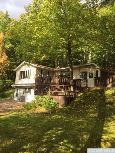 Prattsville Single Family Home For Sale: 5236 County Route 10